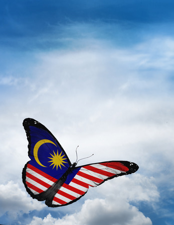 Malaysia flag butterfly flying on sky background Banco de Imagens