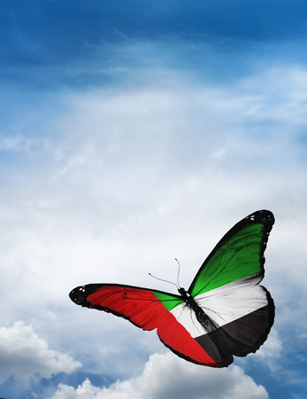 UAE flag butterfly flying on sky background