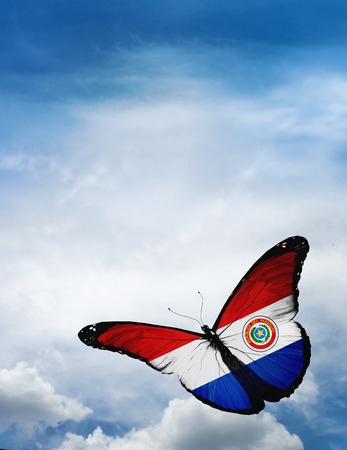 bandera de paraguay: Paraguay bandera de la mariposa volando sobre el cielo de fondo Foto de archivo