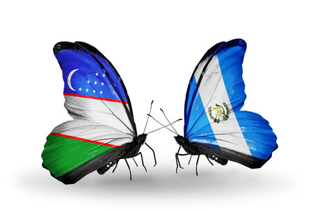 Two butterflies with flags on wings as symbol of relations Uzbekistan and Guatemala photo