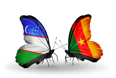 Two butterflies with flags on wings as symbol of relations Uzbekistan and Cameroon photo