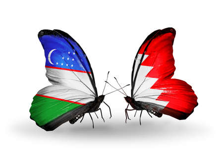 bahrain money: Two butterflies with flags on wings as symbol of relations Uzbekistan and Bahrain