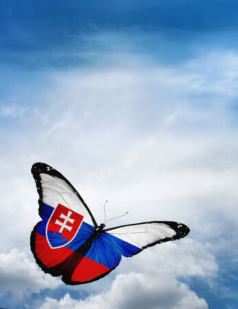 butterfly flying: Slovakia flag butterfly flying on sky background