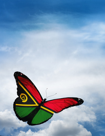 butterfly flying: Vanuatu flag butterfly flying on sky background