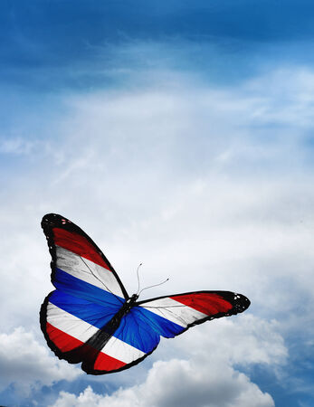 costa rica flag: Costa Rica flag butterfly flying on sky background