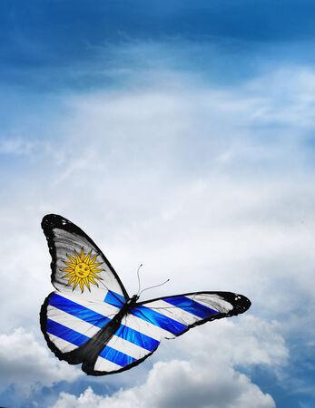 uruguay flag: Uruguay flag butterfly flying on sky background