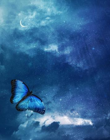 Blue butterfly on dark blue sky background photo