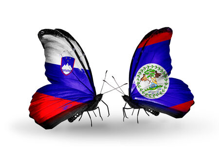 Two butterflies with flags on wings as symbol of relations Slovenia and Belize photo