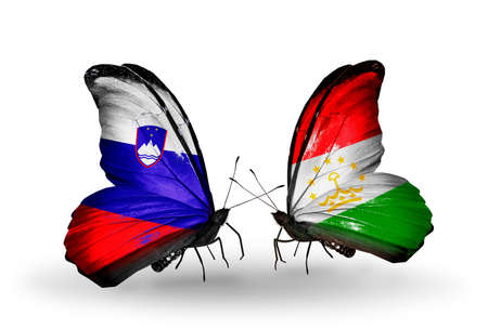 economy of tajikistan: Two butterflies with flags on wings as symbol of relations Slovenia and  Tajikistan Stock Photo