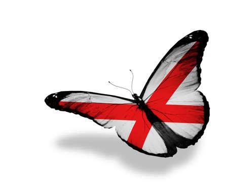 alabama flag: Alabama flag butterfly, isolated on white
