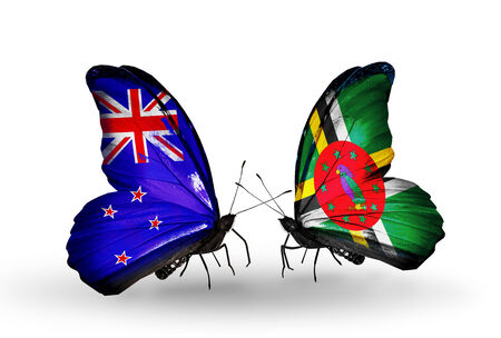 Two butterflies with flags on wings as symbol of relations New Zealand and Dominica photo