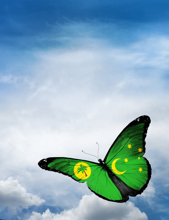 cocos: Cocos (Keeling) Islands flag butterfly flying on sky background