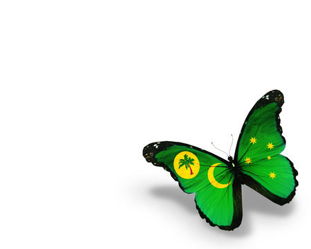 cocos: Cocos (Keeling) Islands flag butterfly, isolated on white background