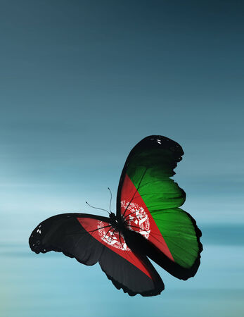 butterfly flying: Afghanistan flag butterfly flying on sky background Stock Photo