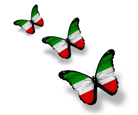 Three North Rhine-Westphalia  flag butterflies, isolated on white photo