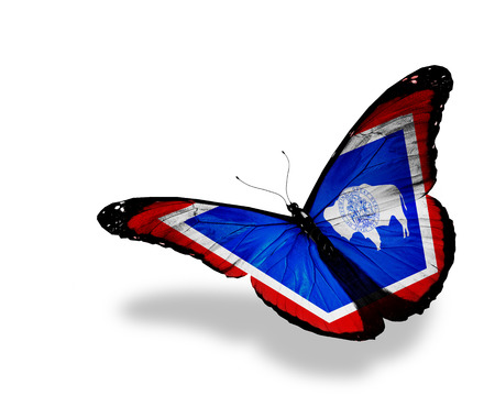 butterfly flying: Wyoming flag butterfly flying on sky background Stock Photo