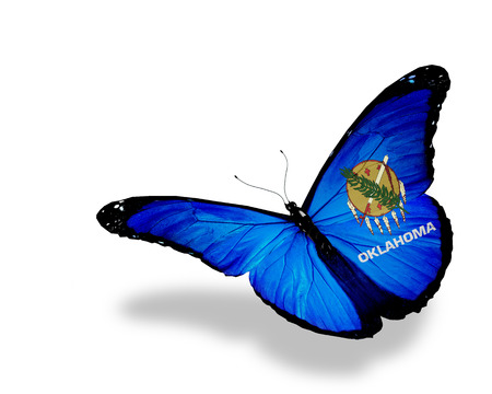 butterfly flying: Oklahoma flag butterfly flying on sky background