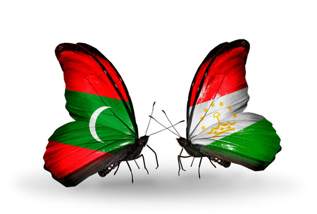economy of tajikistan: Two butterflies with flags on wings as symbol of relations Maldives and Tajikistan