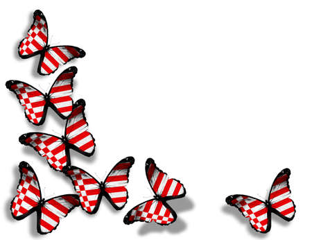 Bremen flag butterflies, isolated on white background photo