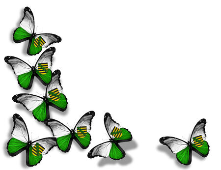 Saxony flag butterflies, isolated on white background photo