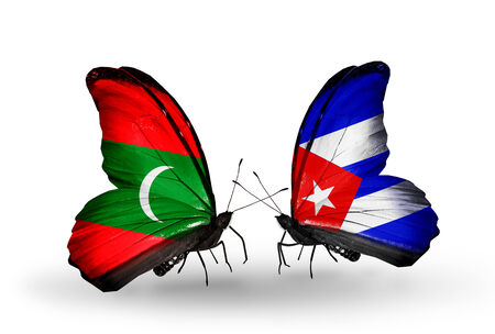 Two butterflies with flags on wings as symbol of relations Maldives and Cuba Stock Photo