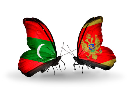 Two butterflies with flags on wings as symbol of relations Maldives and Montenegro photo