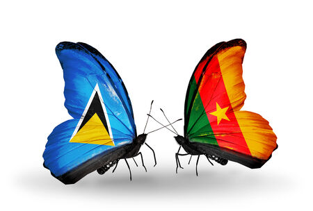 Two butterflies with flags on wings as symbol of relations Saint Lucia and  Cameroon photo