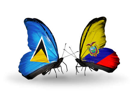 lucia: Two butterflies with flags on wings as symbol of relations Saint Lucia and Ecuador