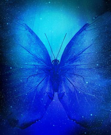 蝶が付いている星のクラスターと空間の表示