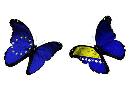 Concepto - dos mariposas con banderas de la UE y Bosnia y Herzegovina volar