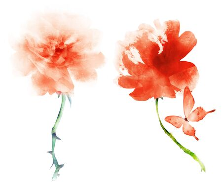 Watercolor flowers , isolated on white background Фото со стока