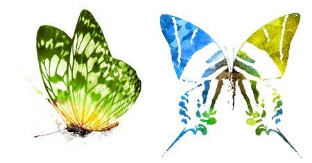 Dos mariposas acuarelas, aisladas sobre fondo blanco
