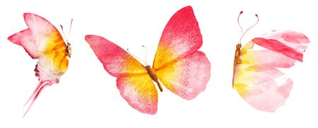 Three watercolor butterflies, isolated on white background Stock Photo