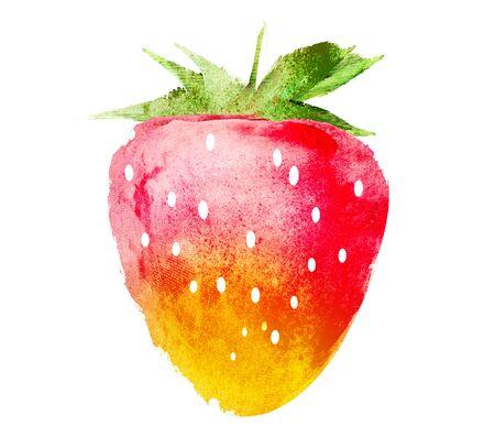 Aquarell Erdbeere auf Weiß Standard-Bild