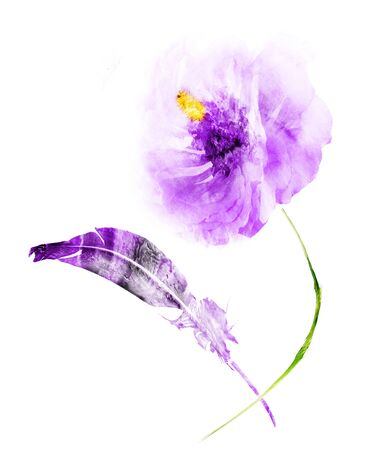 Watercolor flower and feather, isolated on white background