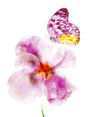 Watercolor flower with butterfly, isolated on white background Фото со стока