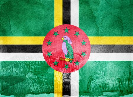 Watercolor flag on background. Dominica