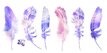 Watercolor feathers with butterfly, isolated on white background. Set