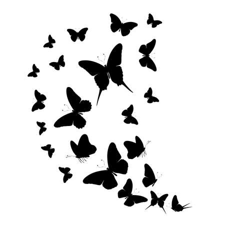 Flock of silhouette black butterflies on white background Banque d'images