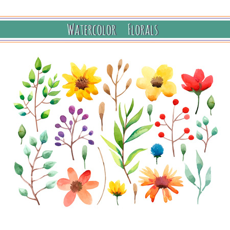 Watercolor floral collection with leaves and flowers. Wedding, romantic collection.Spring or summer design for invitation, wedding or greeting cards. Vector illustration Banco de Imagens - 41781117
