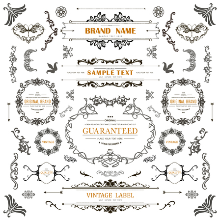 Set of Vintage Decorations Elements.Flourishes Calligraphic Ornaments and Frames with place for your text.