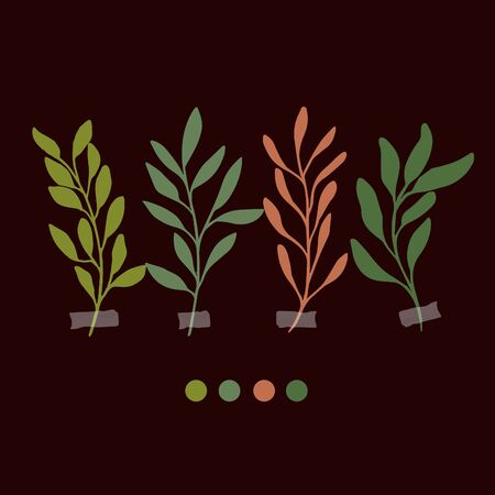 Vector botanic illustrations. Botanical clipart. Set of color branches. Floral Herb Design elements. Perfect for wedding invitations, greeting cards, blogs, posters and more