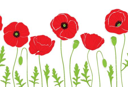 Fleurs de pavot rouge sur fond blanc. Motif de fond sans couture. Illustration vectorielle.
