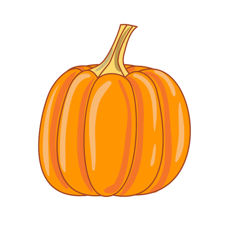 Pumpkin on a white background.