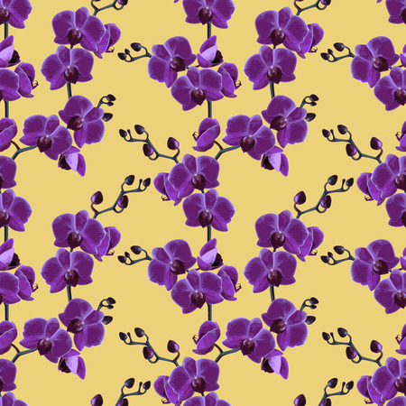 Beautiful violet tropical orchids flower.  Seamless pattern. Vector illustration.