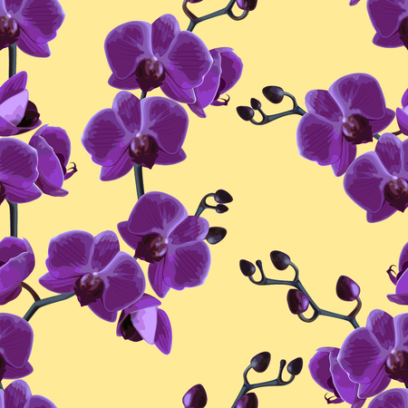 Seamless tropical pattern. Beautiful violet tropical orchids flower.  Vector illustration.