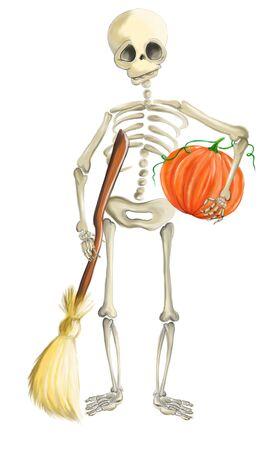 Illustrated human skeleton with pumpkin and broom halloween