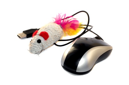 Optical notebook wheel mouse with toy mouse photo