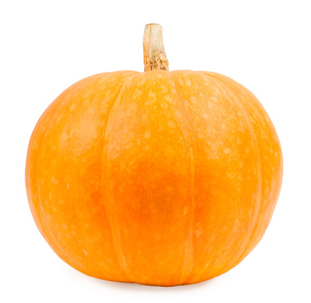 dynia: Pumpkin on a white background, the pumpkin isolated vegetables on a white background Zdjęcie Seryjne