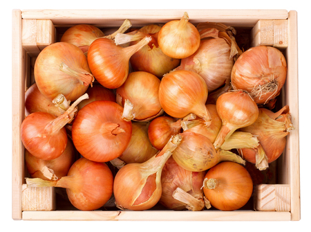 wood box: Onions in a wooden box the isolated Stock Photo
